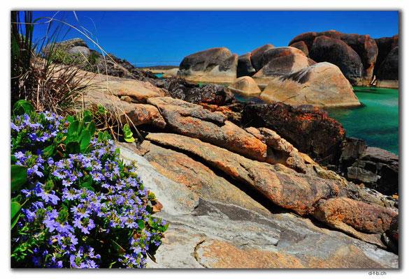 AU0804.Elephant Rocks