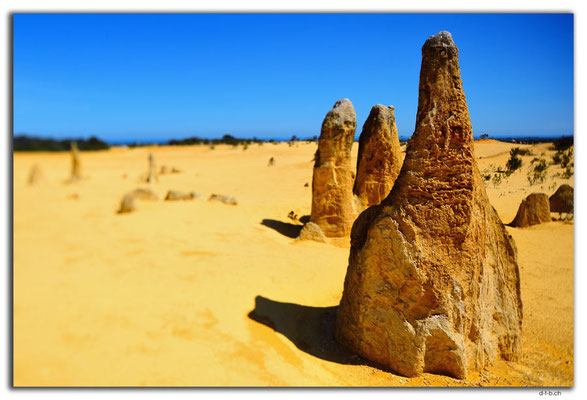 AU0586.Nambung N.P.Pinnacles
