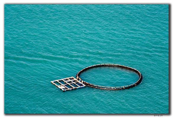 HK0091.Lamma Island.Fischzucht