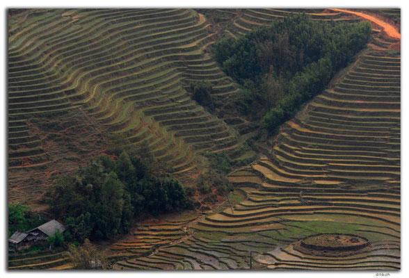 VN0062.Sapa.Muong Hoa Valley