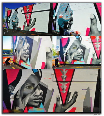 NZ0336.Taupo Streetart by Pauly B!