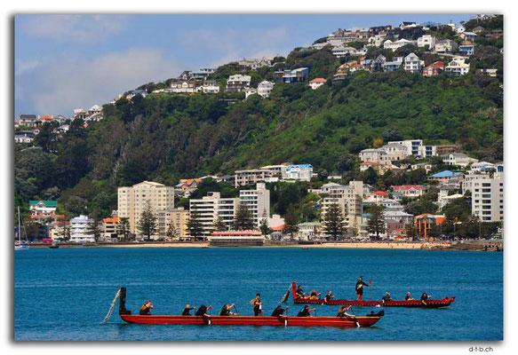 NZ0459.Wellington.Hafen.Begrüssungswakas
