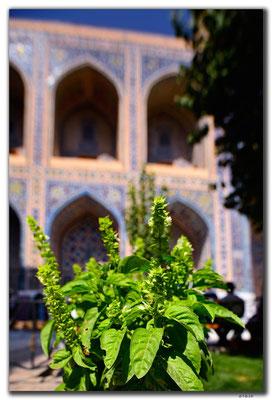 UZ0074.Samarkand.Registan.Ulugbek Medressa