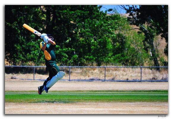 NZ0714.Scargil Domain.Cricket