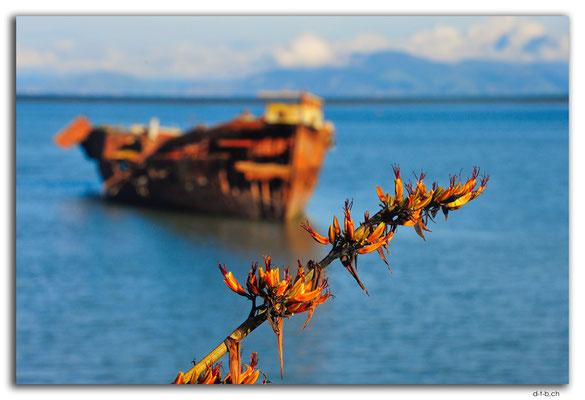 NZ0488.Motueka.Janie Seddon Shipwreck