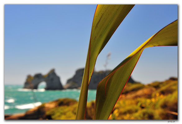NZ0624.Wharariki Beach.Archway Islands