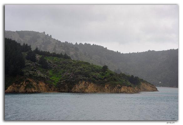 NZ0474.Queen Charlotte Sound