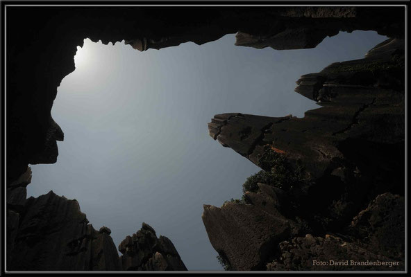 C0816Stone Forest