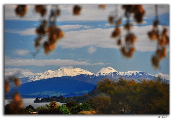 NZ0282.Taupo.Tongariro N.P