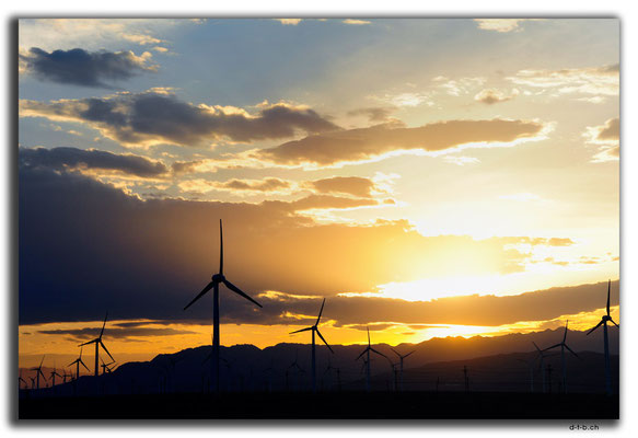 CN0039.Windpark am Abend
