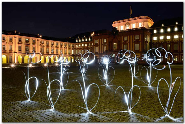 DE006 Universität Mannheim