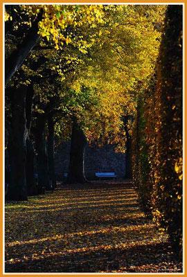 A0594.Palastgarten.Trier.