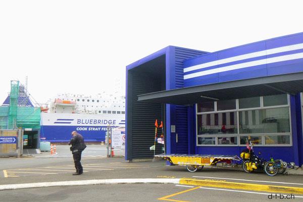 NZ: Solatrike in Wellington vor der Fähre