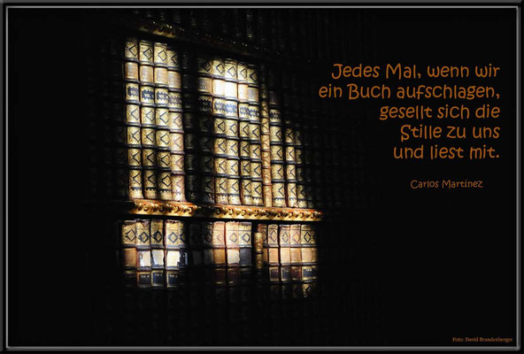 S0146.Bibliothek.Stift.Melk.AT