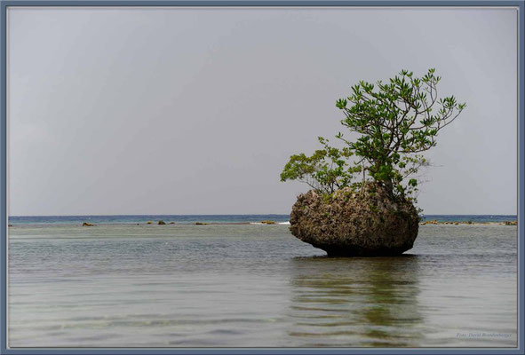 JM012 Blue Lagoon
