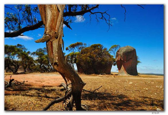 AU0994.Murphy's Haystacks