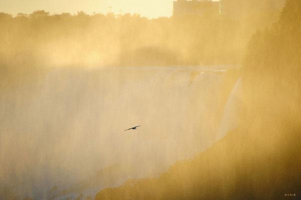 CA0411 Niagara Falls
