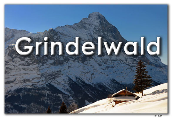 Fotogalerie Grindelwald / Photogallery Grindelwald