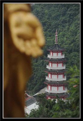 C2510 Hong Kong Tempel der 10'000 Buddhas