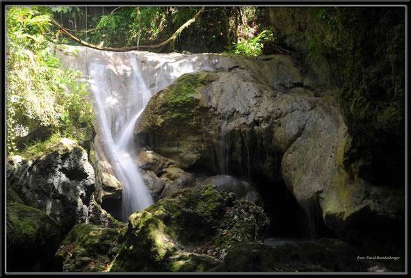 JM018 Somerset Falls