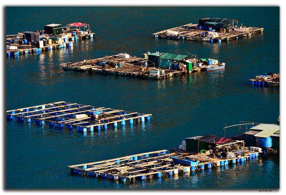 HK0099.Lamma Island.Fischereibetrieb
