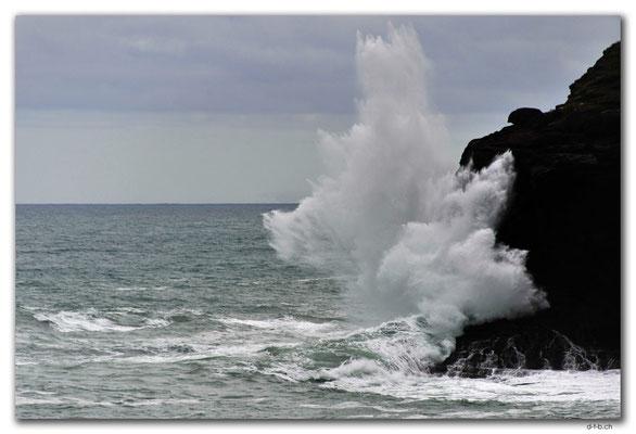 NZ0905.Curio Bay,Wave