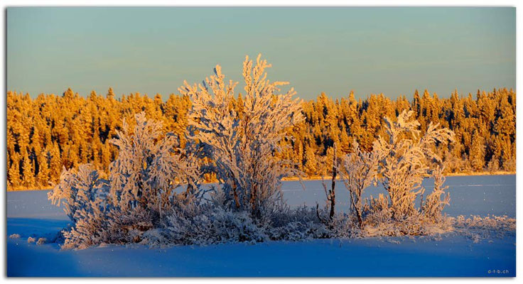 SE0077.Lapland Wilderness.Kappirasjärvi