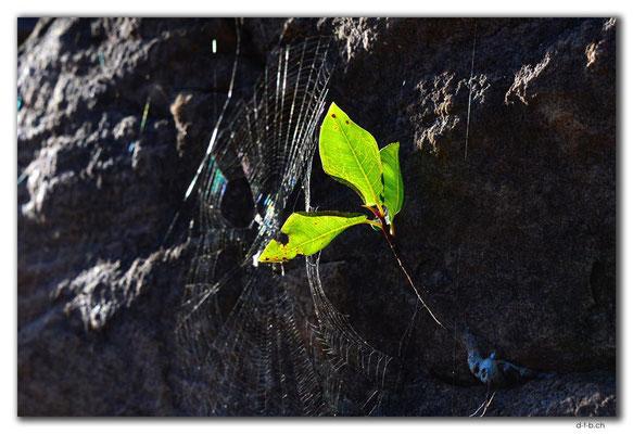 AU0039.Kakadu N.P. Nawurlandja Lookout.