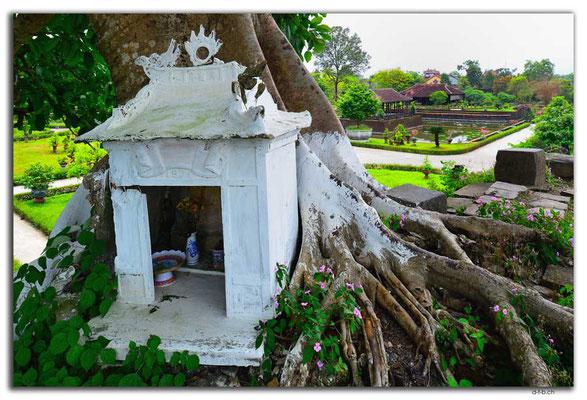 VN0163.Hue.Citadel.Co Ha Garden