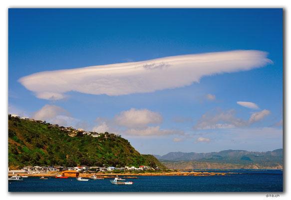 NZ0450.Wellington.Kunst an der Küste