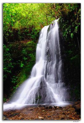 NZ0476.Pelorus Bridge.1.Waterfall