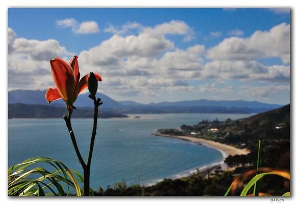 NZ0090.Omapere