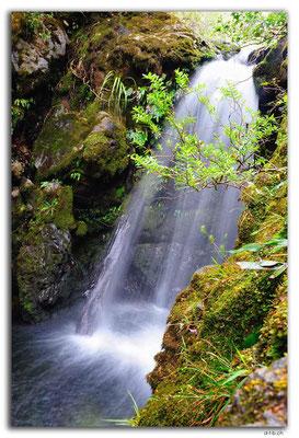 NZ0533.Kahurangi N.P.Bullock Creek Falls