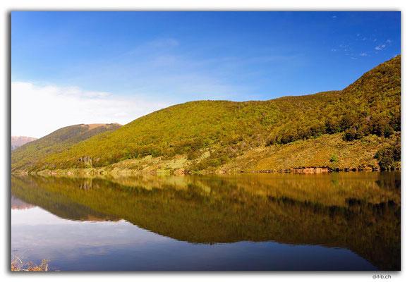 NZ0510.Kahurangi N.P.Cobb Lake