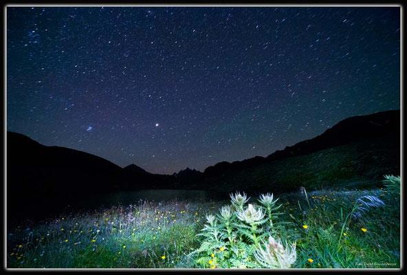 A0526.Novaier Seeli.Klosters.CH