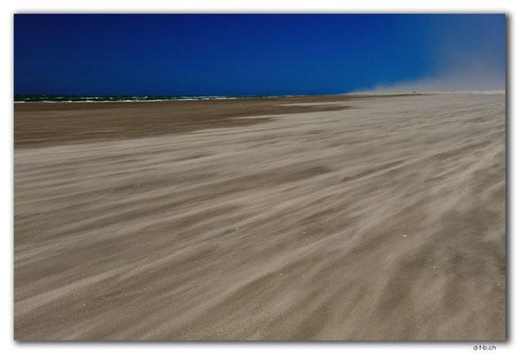 NZ0609.Farewell Spit.Ocean Beach.Blowing Sands