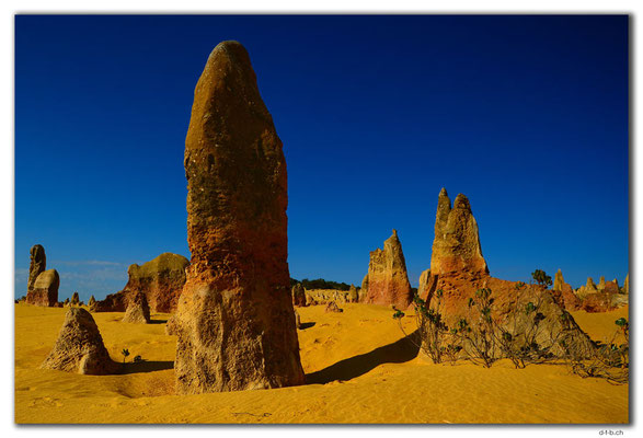AU0593.Nambung N.P.Pinnacles