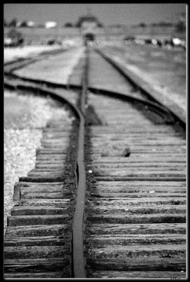 PL048.Birkenau.Schienenstrang