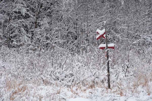 Schweden,Moskojärvi1
