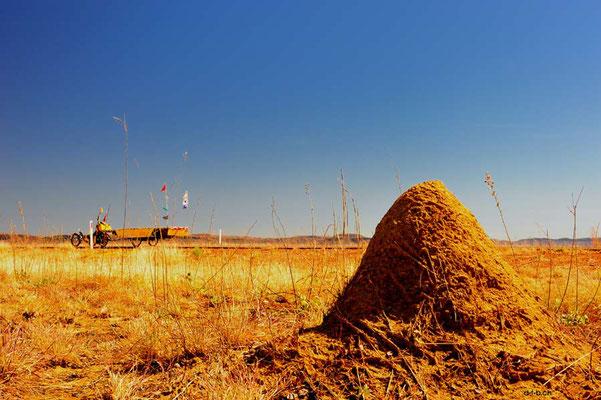 AU: Solatrike mit Termitenbau