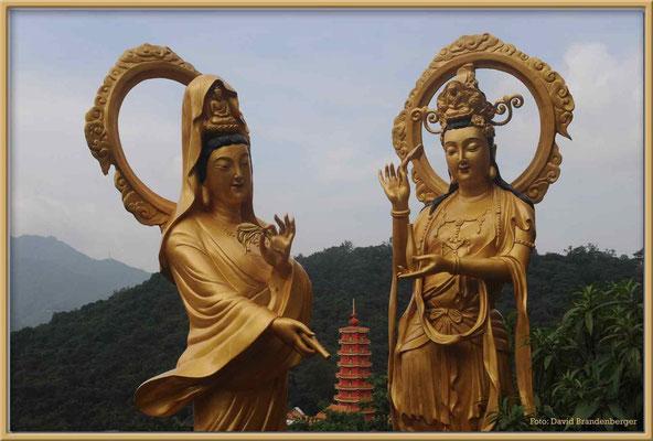 C2509 Hong Kong Tempel der 10'000 Buddhas