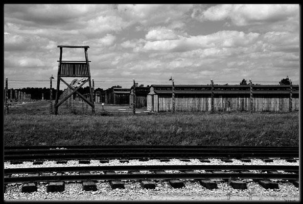 PL036.Birkenau.Wachturm