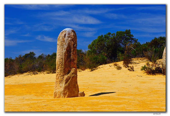AU0576.Nambung N.P.Pinnacles