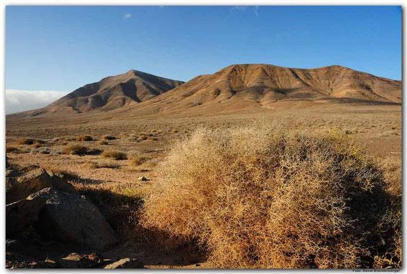 LAN094. Playa Blanca