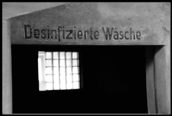 PL044.Birkenau.Waschraum