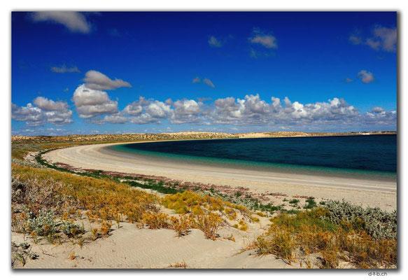 AU0383.Coral Bay