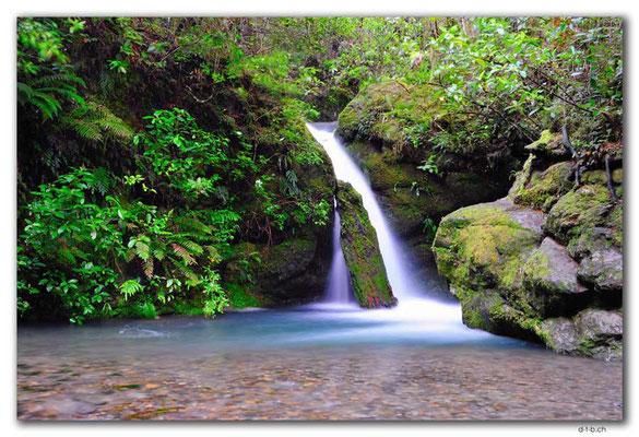NZ0478.Pelorus Bridge.2.Waterfall