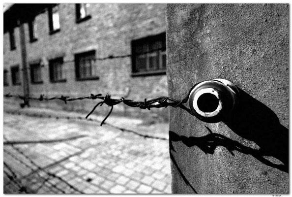 PL011.Auschwitz.Detail,Zaun