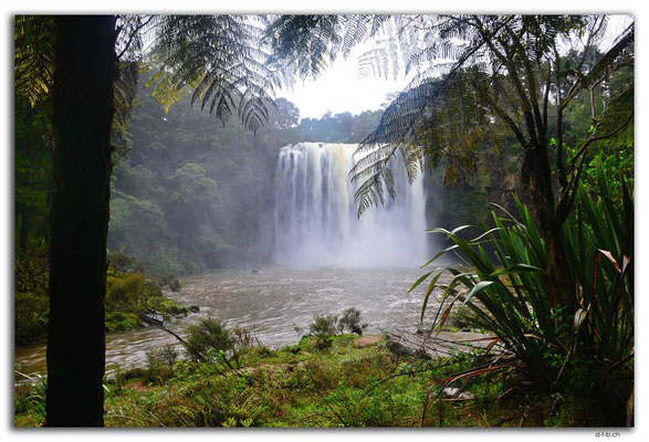 NZ0128.Kerikeri.Rainbow Waterfall