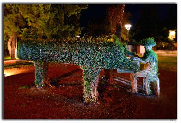 TR0323.Antalya.Buschmusiker